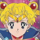 Sailor Moon Cardzillion Series 3 Card 91