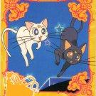 Sailor Moon Carddass Card 302