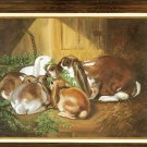 The Barnyard Families Lops on Clover - Rabbits  for Counted Cross Stitch