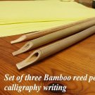 Bamboo reed pens for Arabic calligraphy - Set of three