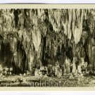 The Kings Palace Carlsbad Caverns New Mexico RRPC postcard
