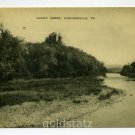 Muncy Creek Hughesville Pennsylvania postcard