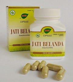 2 x 30  indonesian herb capsules jati belanda bastard cedar leaves for fat loss