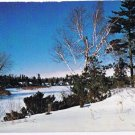 Southern Ontario Postcard Winter Scene In The Forests