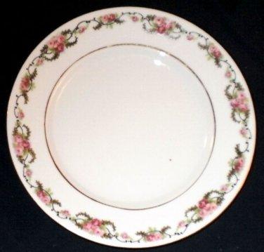VINTAGE Schwarzenhammer Roses Salad Plate 1910-23