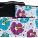 NEW Hawaiian Hibiscus Flowers Size Med Dog Collar