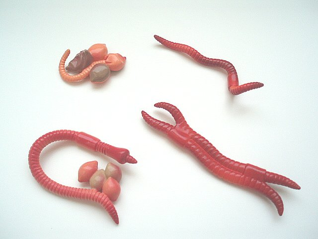Earthworm Life Cycle Figures w/ Free 3-part cards