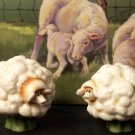 "Enesco ""Home Grown"" SHEEP Salt & Pepper Shakers"