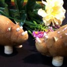 "Enesco ""Home Grown"" HIPPO Salt & Pepper Shakers"
