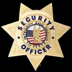Security Badge 7pt Star Gold FCBA16