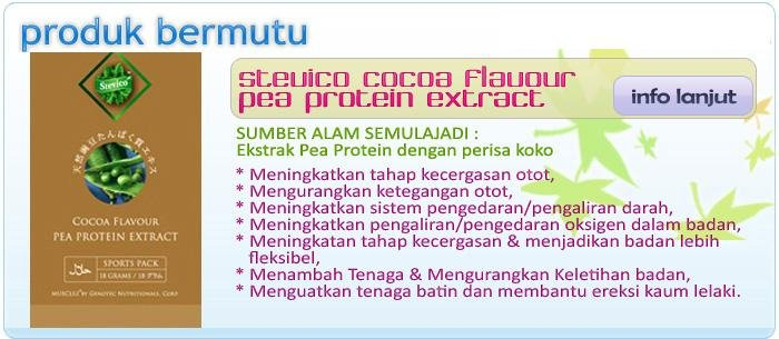 Stevico Cocoa Flavour Pea Protein Extract