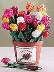 2-Dozen Assorted Rose Pen In Pot