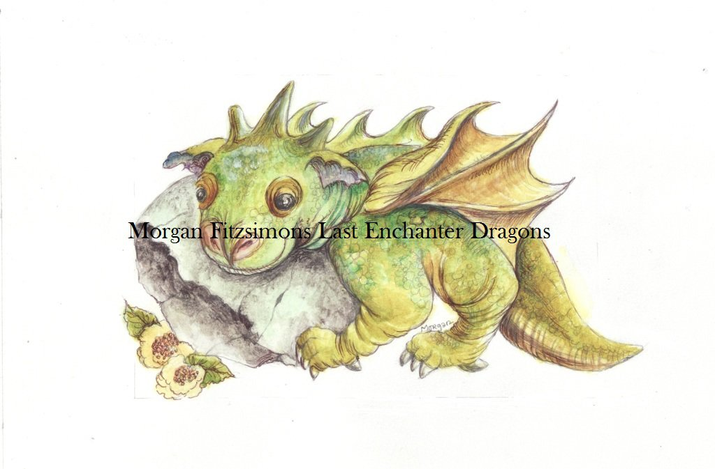 Minou Dragon 12 x 8 FINE ART CANVAS FRAMED PRINT