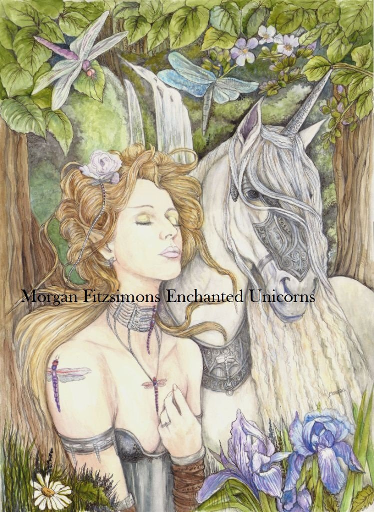 Aeshna and Unicorn 24 x 16 FINE ART CANVAS FRAMED PRINT