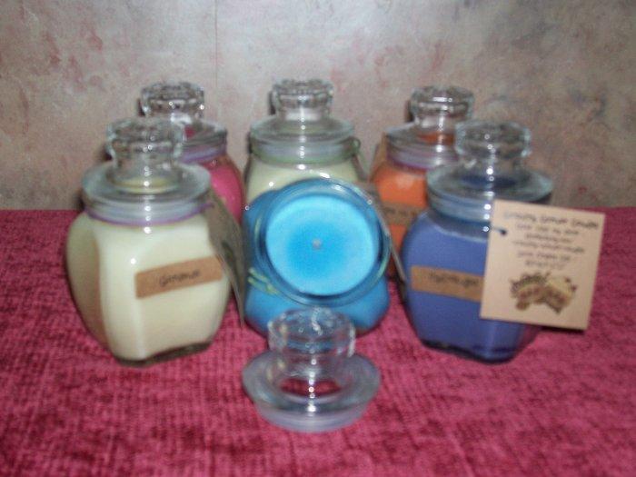 8 oz . Baltimore Style Jar Candle ~ Fressia ~SALE~