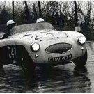 Wisdom-Monaco Works Austin Healey 100S racing at 1956 Mille Miglia - Rally Car Photo Print