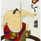 Japanese Noren Ukiyoe SUMOU Curtain Sheets  Tapestry , Partition 85 x 150 cm BIG