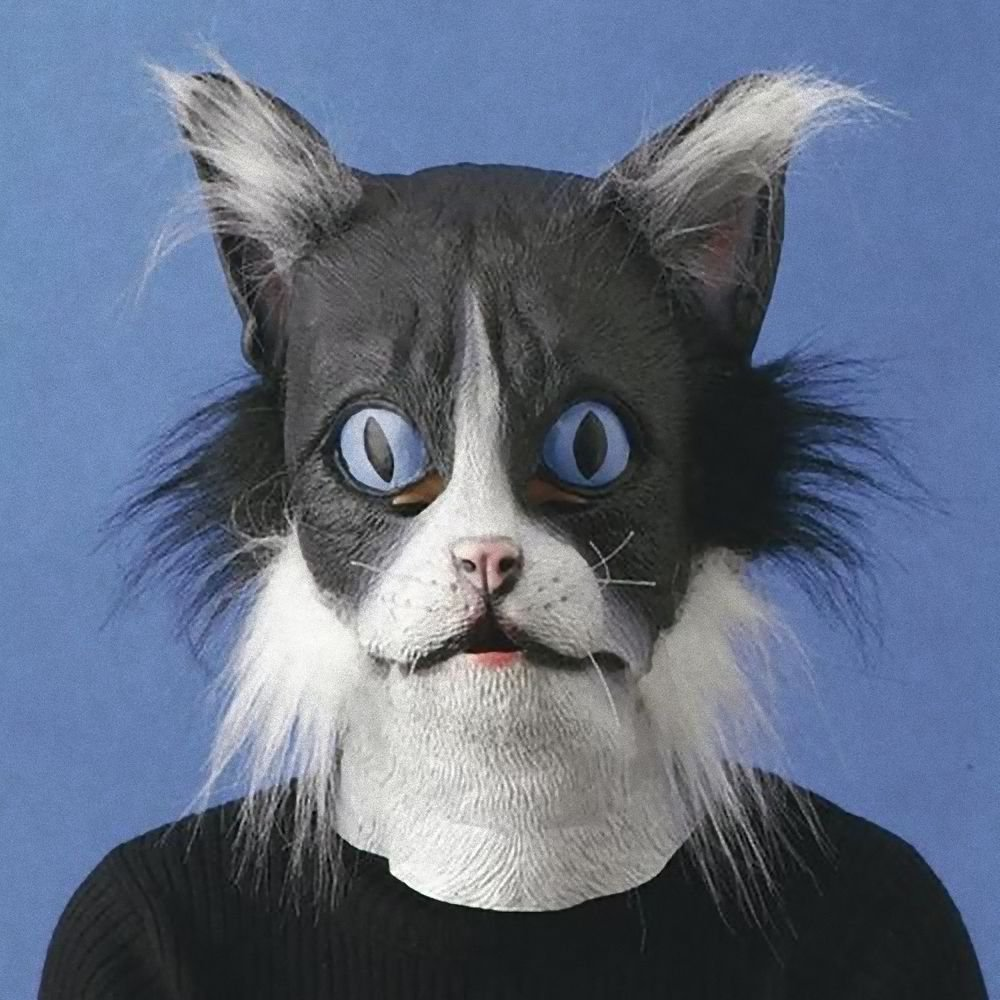 Rubber European Cat Mask Ivent , Halloween ,  Party , Costume Play NEW