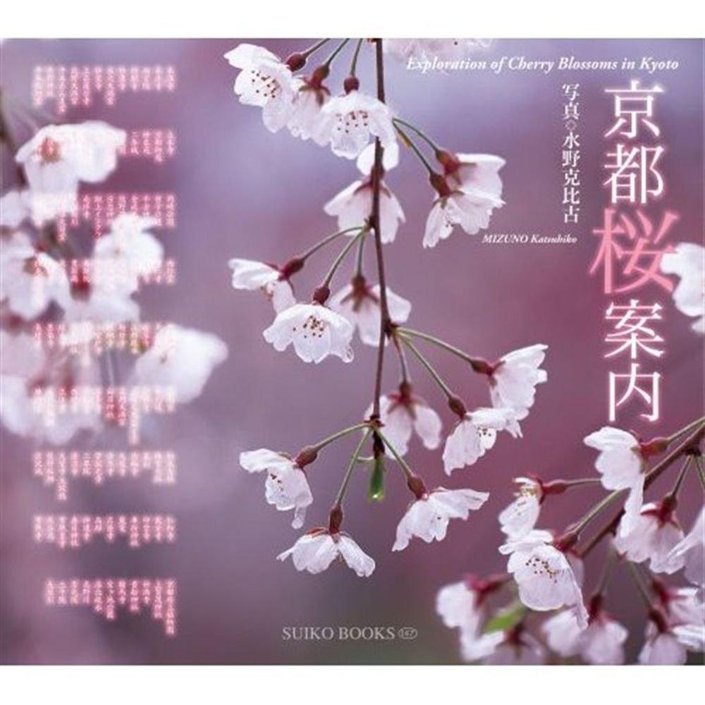 Guide Book Kyoto Sakura Cherry blossom Guidance Introductio Travel Japan NEW