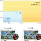 "Sony Camcorders FDR-AX1 4K/60p ""Exmor R"" CMOS Sensor Handycam Camera from Japan"