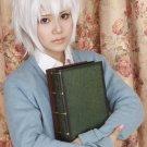 Sakata Gintoki Silver Gray Cosplay Wig