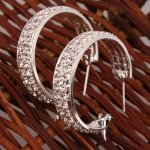 Small Size Super-star CZ-stud Thick Hoop Earrings