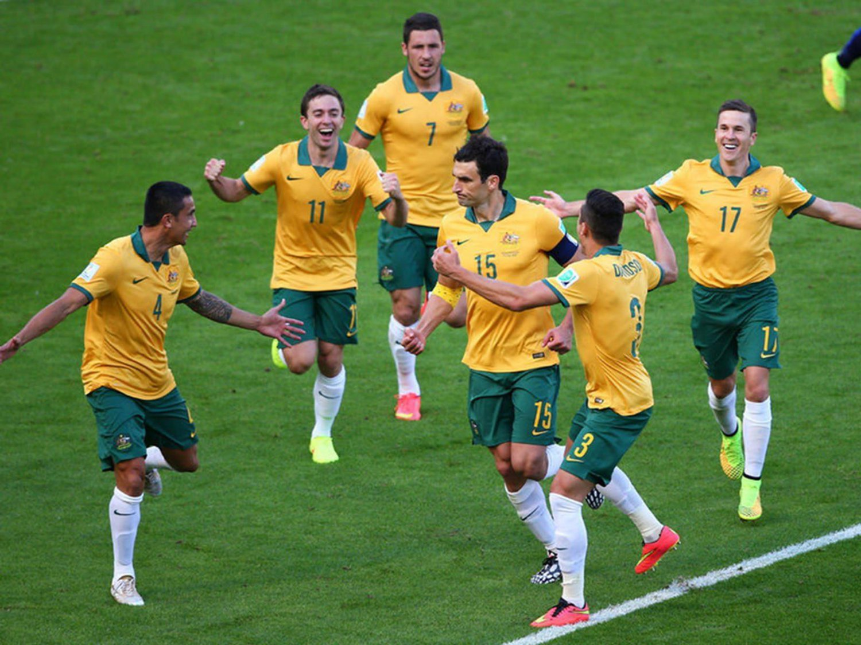 WC 0185 - 8 X 6 Photo - Football - FIFA World Cup 2014 - Holland V Australia - Jedinak Celebration