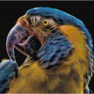 FRACTAL PARROT CROSS STITCH PATTERN PDF ONLY