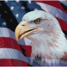 PATRIOTIC EAGLE CROSS STITCH PATTERN PDF ONLY