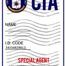 "CIA Badge ""Person of Interest"" Personalized"