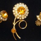 Vintage flower rhinestone brooch set