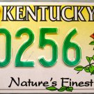 2002 Kentucky Nature's Finest Cardinal-Red Bird License Plate (30256)