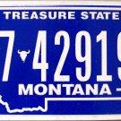 2010 Montana License Plate (7-42919B)
