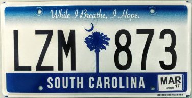 2017 South Carolina License Plate (LZM 873)