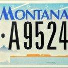 2006 Montana License Plate (6-A95244)