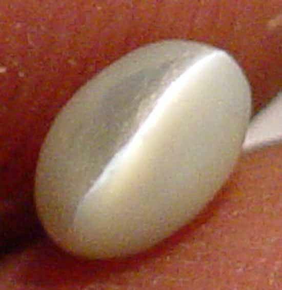 0.65CT Sharp Clean Chrysoberyl Cat's Eye Gem 10081582