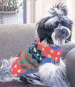Doggiduds Primary Color Inca Print Sweater M NEW