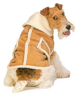 Fashion Pet Tan Faux Suede Shearling Coat Small