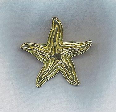 GORGEOUS PARK LANE FREE FORM STAR PIN/PENDANT