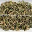 Sceletium Tortuosum (Kanna, Kougoed)- 500 grams (1lb)