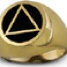 Mens Onyx 14K Gold Ring