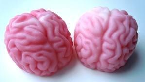 Handmade 3 x Brain Soaps � Birthday gift, party bag, novelty, joke, prank, practical joke