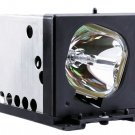 LAMP IN HOUSING FOR PANASONIC TELEVISION MODEL PT45LC12 (P3)