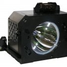 LAMP IN HOUSING FOR SAMSUNG TELEVISION MODEL HLM5065 (SA4)