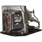 OPTOMA SP.8EG01GC01 SP8EG01GC01 LAMP IN HOUSING FOR PROJECTOR MODEL TX615-3D
