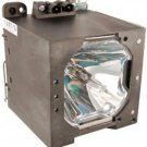 NEC GT-60LP GT60LP 50023151 LAMP IN HOUSING FOR PROJECTOR MODEL GT6000R
