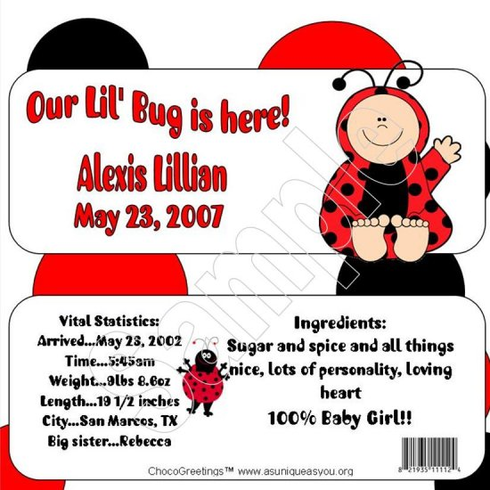 20 Personalized 1.55 oz Candy Wrappers Welcome Little Lady Bug