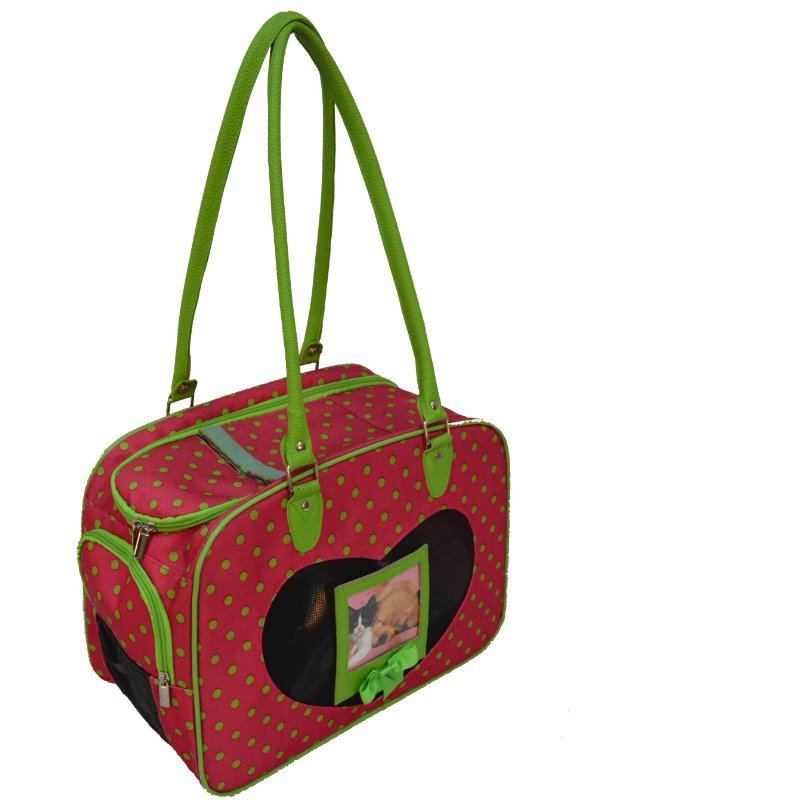 Green Polka Dots Pet Carrier