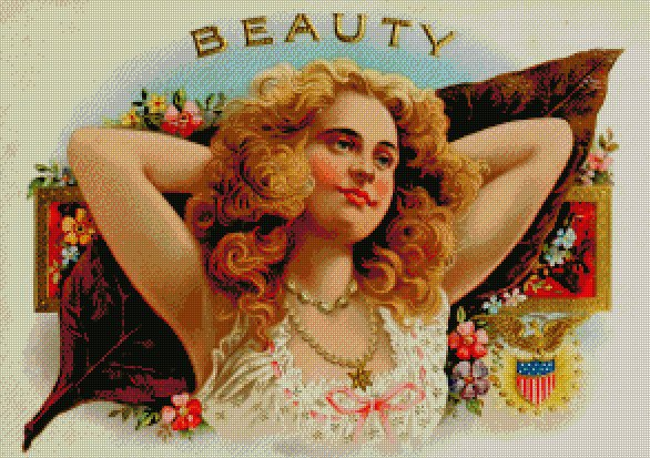 Beauty Counted Cross Stitch - Aida 14 Count