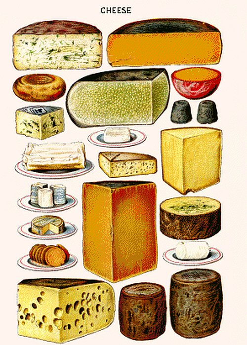 Cheese Collage Counted Cross Stitch - Aida 14 Count